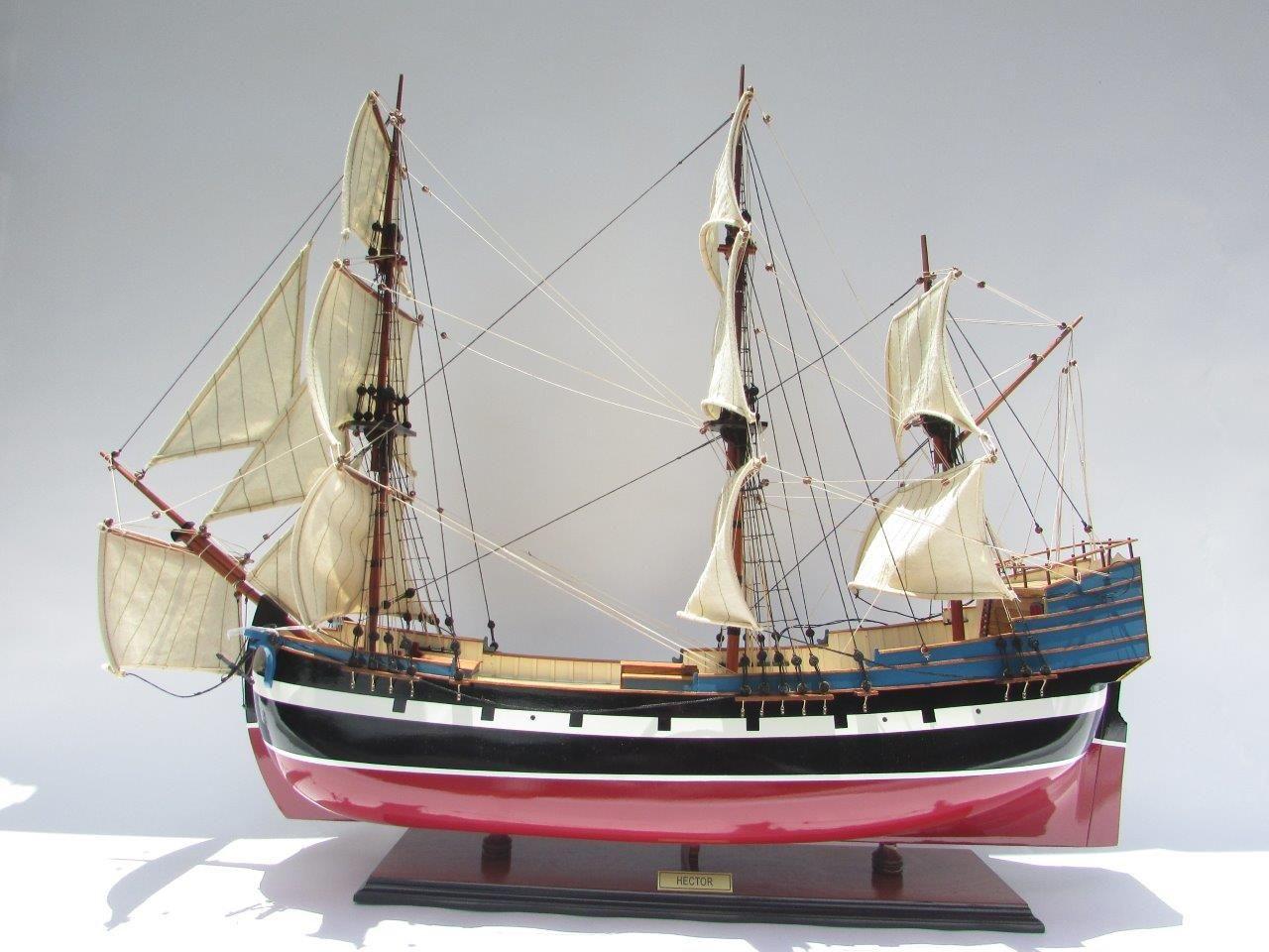 2005-12467-Hector