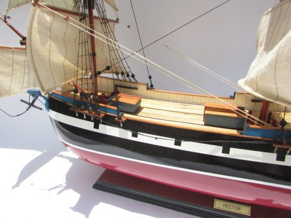 2005-12471-Hector