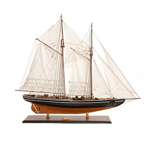 Shop Now For All Display Ship Models